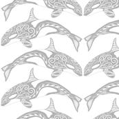 Orca Grey n White