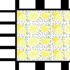 lemon poppy stripes picnic XL