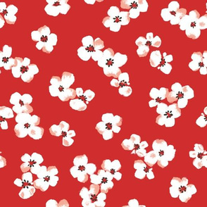poppy flower_orange