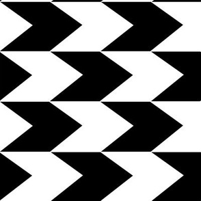 Black and White Chevron Stripes