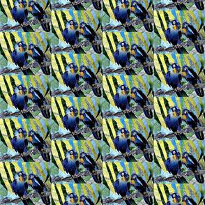 collage__2_-ed
