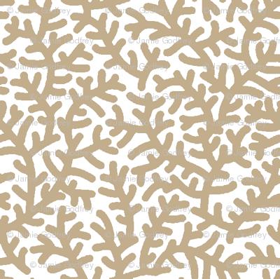 Drabware Coral