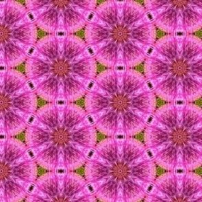 Swirly Beads 24