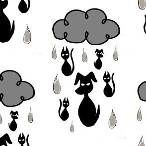 raining cats n dogs