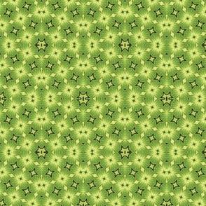 Lime Starburst