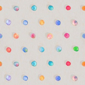 Pastel Rainbow Dots on Grey