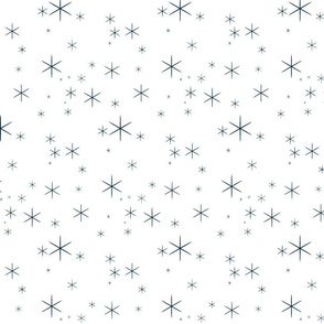 Sparkle Navy/White