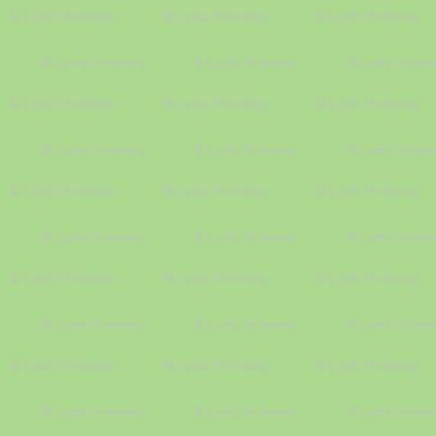 Solid Avocado Green