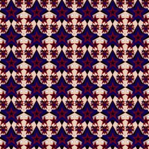 Patriotic, Americana, 4th of July  Primitive Stars Fabric #4