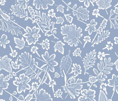 Placid_blue_foliage_shop_preview