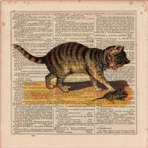 2016-Animal-CAT