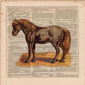 2016-Animal-HORSE