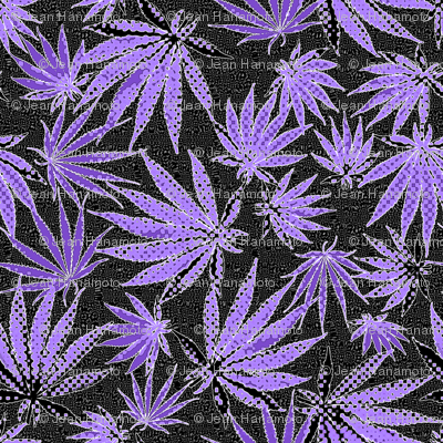 MJ Leaf Purple Dots