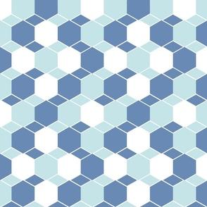 Bricks blue