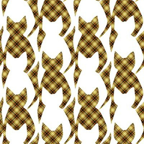 Plaid Cats and White