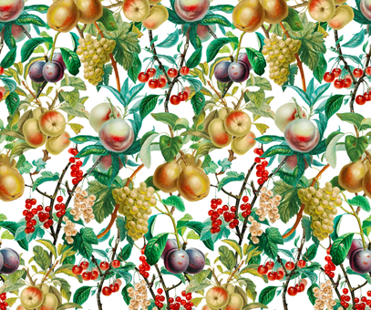 Vintage Fruit fabric by anom-aly on Spoonflower - custom fabric