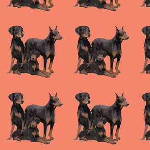 three_dobermans-ch