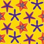 STARFISH Purple Orange Essentials Coordinate