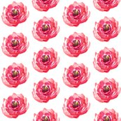 Rrose_for_kids_spoonflower_shop_thumb