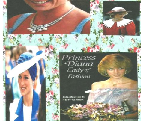 The Beautiful Princess Diana
