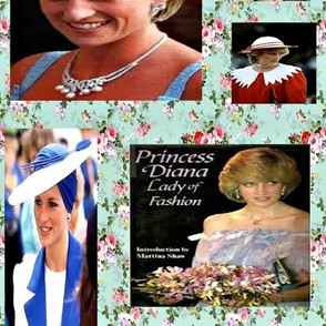 The Beautiful Princess Diana