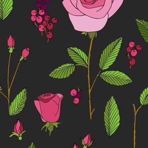 rose_study_dark