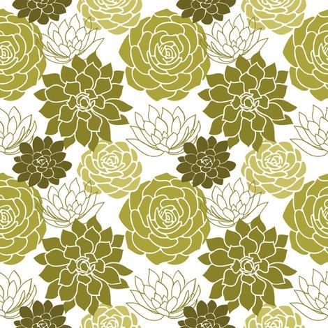 Rsucculents-01_shop_preview