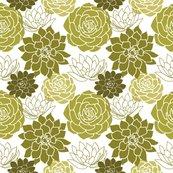 Rsucculents-01_shop_thumb