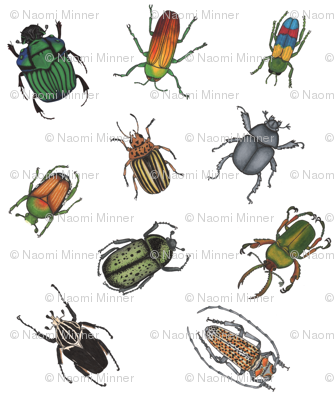 Beetle Fabric