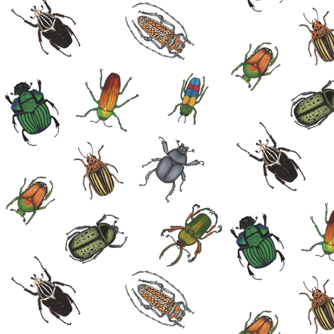 Beetle Fabric  fabric by bella_modiste on Spoonflower - custom fabric