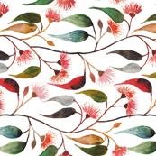 Eucalyptus blossom watercolour