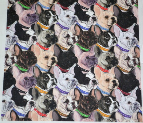 French Bulldogs 2