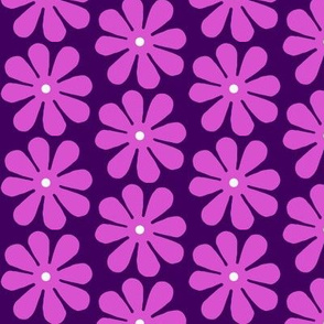 Daisys Purple