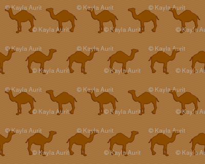 Chocolate Camels