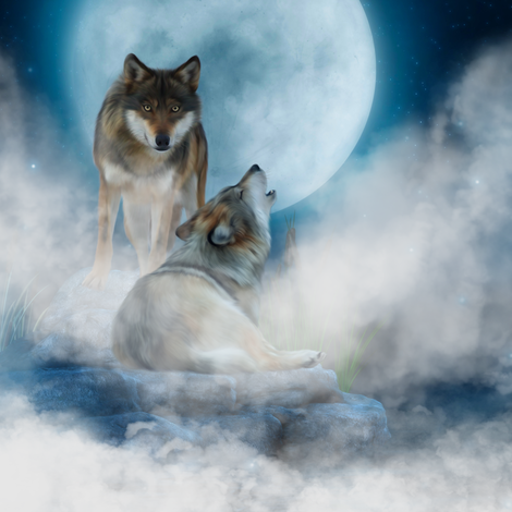 Wolves_in_the_mist fabric by moonduster on Spoonflower - custom fabric
