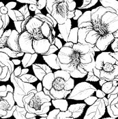 Floral black Ink