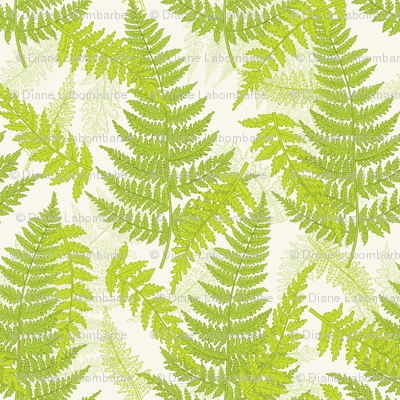 Botanical Ferns - Spring