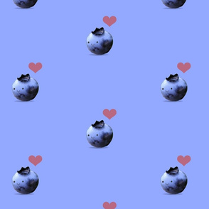 Little Blueberry
