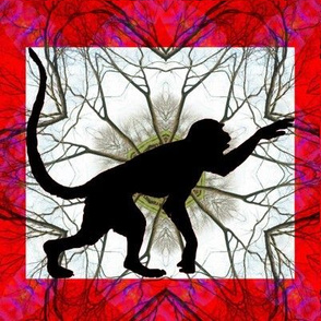 The Year of the Monkey - Exploring Nature