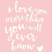 "27"" i love you more than you will ever know // rose quartz"