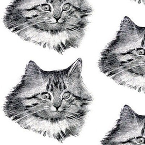 vintage retro kitsch whimsical black cats kittens monochrome black white heads faces Maine Coon