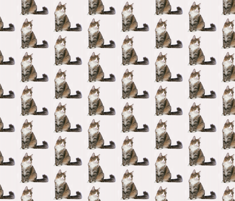 Norwegian Forest Cat fabric by pateisen on Spoonflower - custom fabric