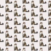 Rrnorwegian_forest_cat_shop_thumb
