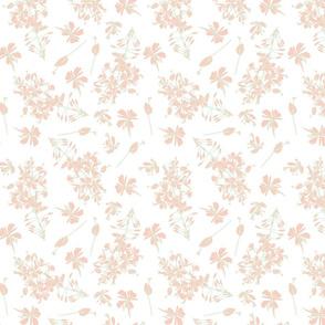 peach flowers on white