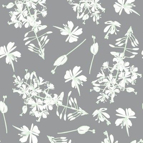 white flowers on gray