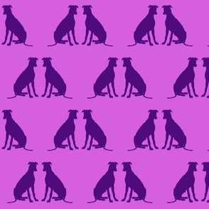Perfect Pair - Greyhounds - Purple