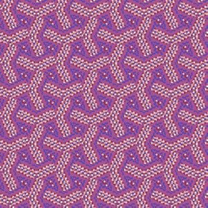 Berry Colored Maze