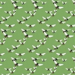 Wasp Flight