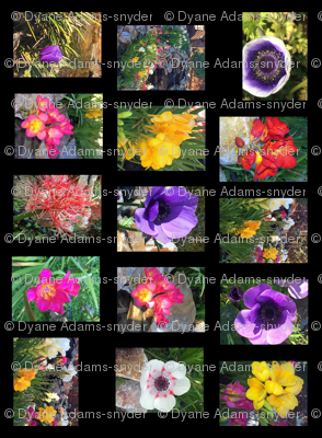 Rrrrrrfull_flower_poster-layers_merged-rotater_preview