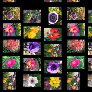 full_flower_poster-layers_merged-rotateR